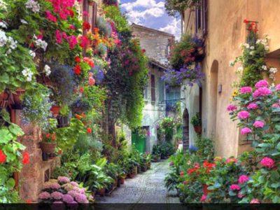 ایتالیا – قدم زدن در کوچه پسکوچههای ورونا