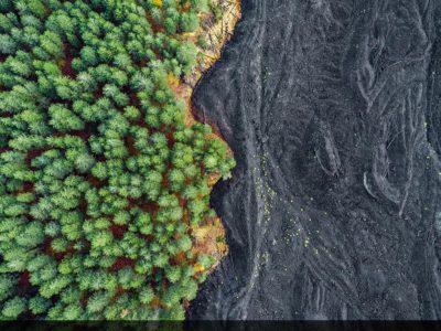 کنار هم قرار گرفتن گدازههای سرد شدهی کوه Etna و یک جنگل در سیسیل ایتالیا