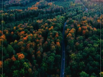 آلمان، جنگل سیاه